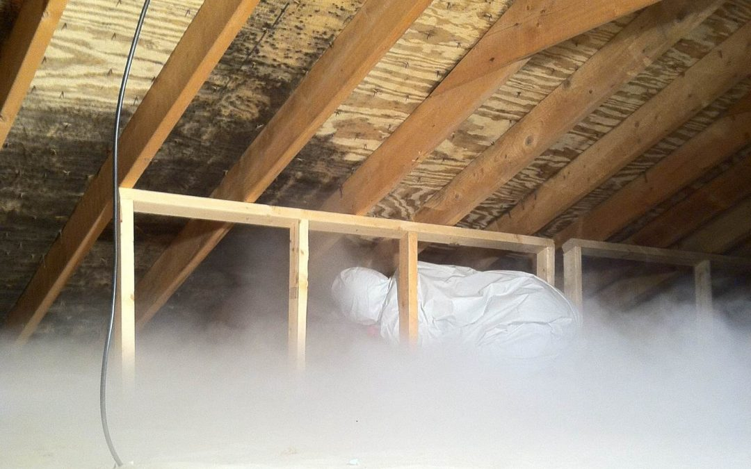Attic Mold & Removal Methods